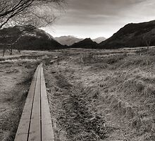 Path to Castle Crag by Greg Artis