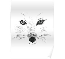 Wolf/fox Poster