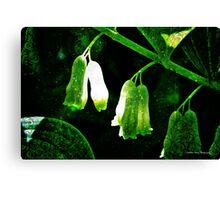 Stirring Magic in the Green Garden Canvas Print