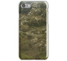 Camels Hump in the mist iPhone Case/Skin