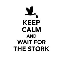 Keep calm and wait for the stork Photographic Print
