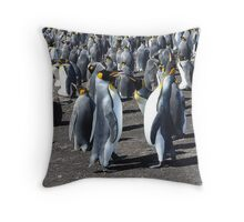The King Penguin  Colony...... Throw Pillow