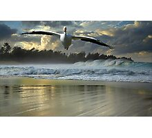 1141-Emergency Landing (Storm) Photographic Print