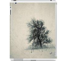 Winter Journeys iPad Case/Skin