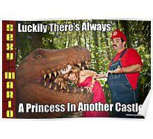 SexyMario MEME - Another Princess Poster