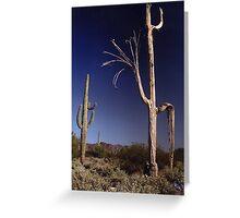 Desert ribs Greeting Card
