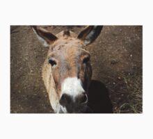 Donkey Baby Tee