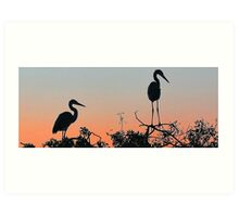 Great Blue Heron - The Rookery Art Print