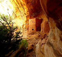 Towerhouse Ruin - Utah by Rick Schafer