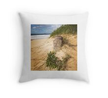 Southbeach Dunes Throw Pillow