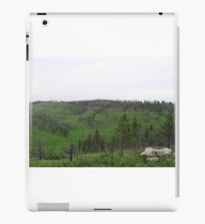 Scenery from the Black Hills iPad Case/Skin