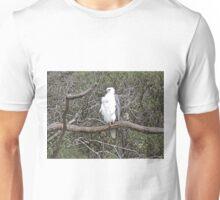 White-Bellied Sea-Eagle, Haliaeetus Leucogaster Unisex T-Shirt