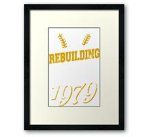 Pittsburgh Baseball Framed Print
