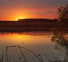Beautiful calm sunset at the lake. by Dals-photo