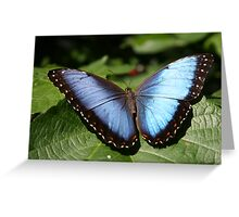 Blue Steel Greeting Card