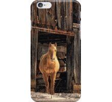 Hello Sweetheart iPhone Case/Skin