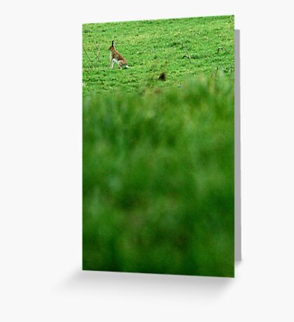 """wHARE'd he go!?"" Greeting Card"