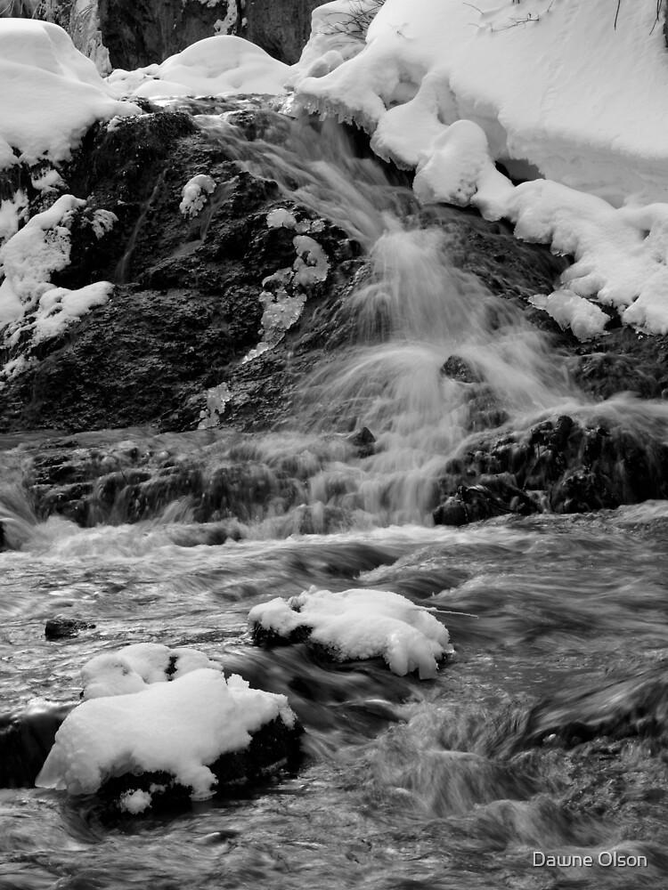 Roughlock Falls by Dawne Olson