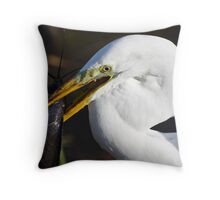 Too Big to Swallow - Everglades National Park, Florida Throw Pillow