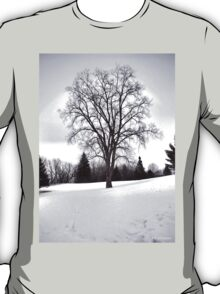 Tree in Landscape, Early Spring with Snow  T-Shirt