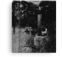 The Cemetery Incident (detail) Canvas Print