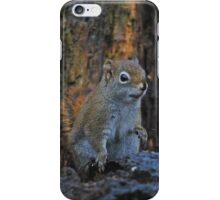 Little Squirrel Number 2 iPhone Case/Skin