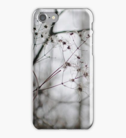 Withered Winter Plant iPhone Case/Skin