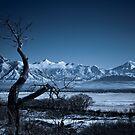 Winter Desolation by Kory Trapane