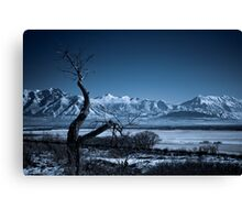 Winter Desolation Canvas Print