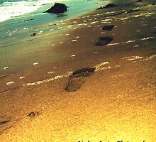 footsteps in the sand  by Lindsey Lowen