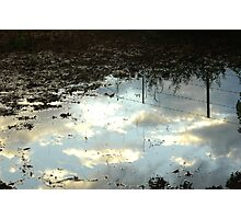 Reflected fence and sky Photographic Print