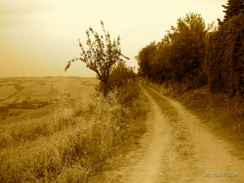 Lonely Path by Michael Fisher