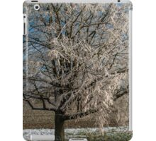 Winter Scene - Frosted Tree iPad Case/Skin