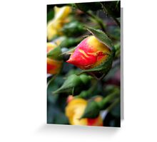 blooming opportunity Greeting Card
