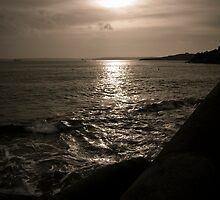 Evening Light St. Mawes Harbour by mariarty