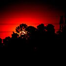 Sunset after the fires by lettie1957