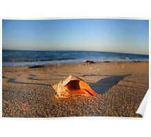 Nantucket at Sunset (Dionis Beach) Poster