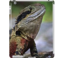 Beautiful River Dragon iPad Case/Skin