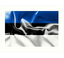 Estonia Flag Art Print