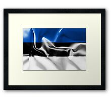 Estonia Flag Framed Print