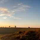 wimmera sunset by Andrew Cowell