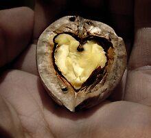 Walnut Heart by Elizarose