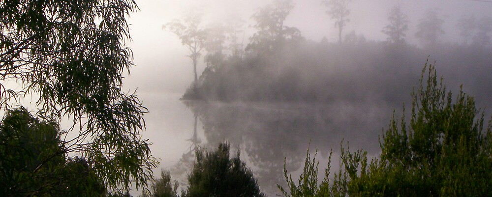 early morning mist on the lake - so relaxing to kayak through by gaylene