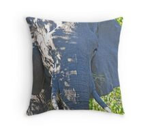 In the Shadows, Moremi Game Reserve, Botswana, Africa Throw Pillow