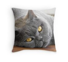 My fave model ... Untouched Throw Pillow