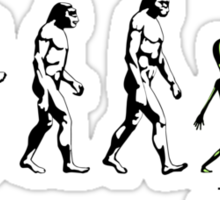 The Missing Link Sticker