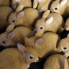 Spring Rabbits Ready for Easter by Steve