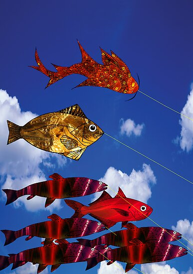 Flying Fish blue sky 5000  x  7100 by Roydon Johnson