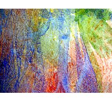 Rainbows Under the Sea Photographic Print