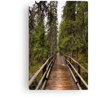 Wooden bridge in a forest Canvas Print